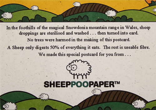 Sheep Poo Paper